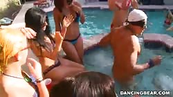 Awesome Dancing Bear pool party with big cocks and huge boobs
